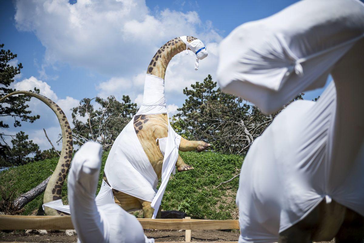 Veszprém, 2016. május 9. Az építés alatt álló veszprémi õslénypark 2016. május 9-én. Harminc dinoszaurusz életnagyságú mása lesz látható a veszprémi állatkerthez tartozó, nyár elején nyíló kéthektáros õslényparkban, ahol a látogatók egy 250 millió évre visszatekintõ földtörténeti kiállítást is megtekinthetnek. MTI Fotó: Bodnár Boglárka