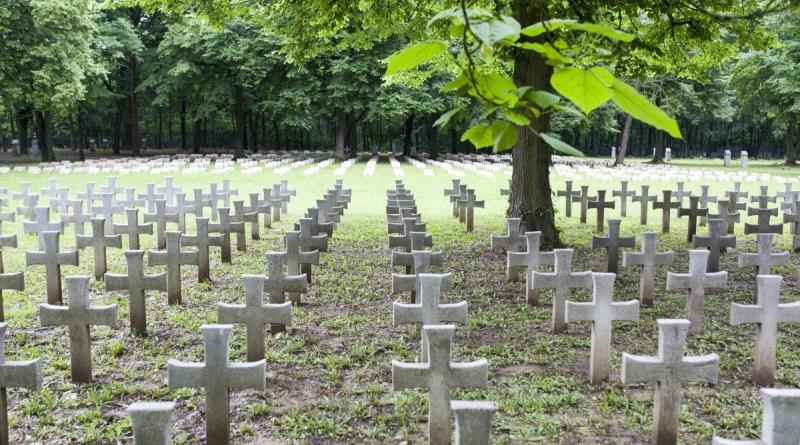 Zalaegerszeg, 2016. június 15. Keresztek a helyreállított zalaegerszegi olasz katonai temetõben 2016. június 15-én. Az olasz hõsi temetõ 1927-ben épült, 1400 sírhelyet számlál. A számozott mûkõ keresztek alatt olaszok, a sisakos emlékmûvek alatt pedig más nemzetek fiai nyugszanak. MTI Fotó: Varga György