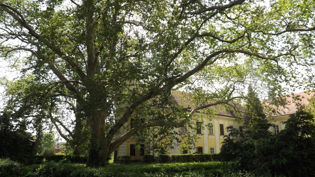 A zalaszentgróti Batthyány kastély Három testőre (Fotó: Ökotárs.hu)