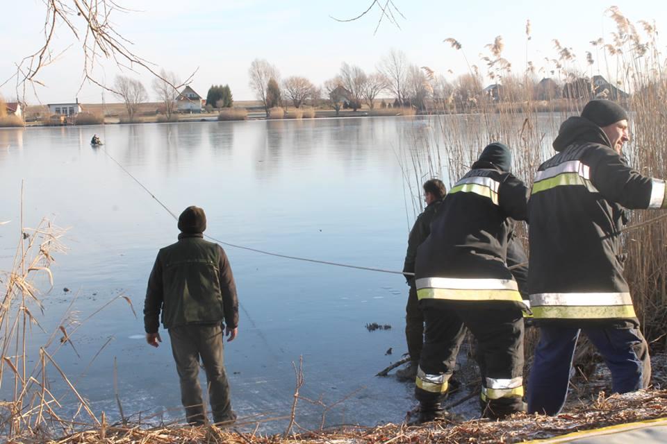Csepregi tó, őz mentése