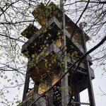 Kirándulási tipp: Margit-kilátó a Kőszegi-hegység osztrák oldalán